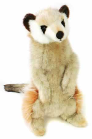 Meerkat by Hansa