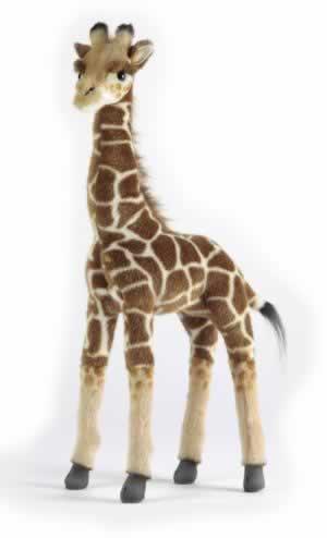 Giraffe by Hansa