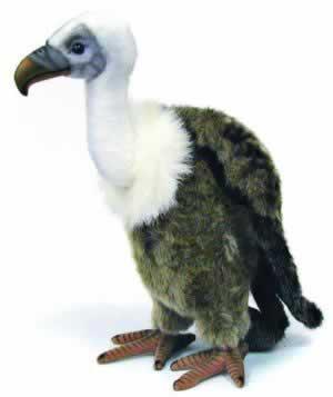 Vulture by Hansa